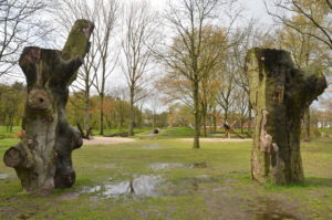 oude beuk