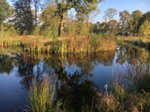 IVN-natuurexcursie: 'Rondom het Heiligenbergerbeekdal'