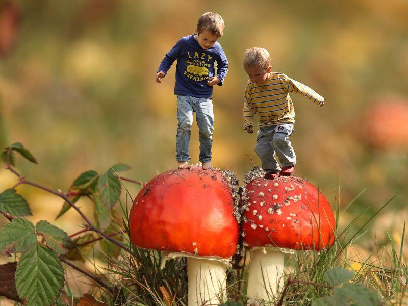Peuters in het Wild: Op een grote paddenstoel @ Pop-up Parkhuis